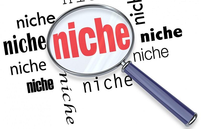 niche-sites